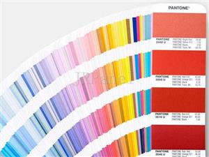 The Difference Between Pantone Coated/Uncoated Color Card